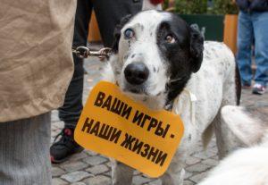 Общее понятие правонарушения согласно законодательству РФ